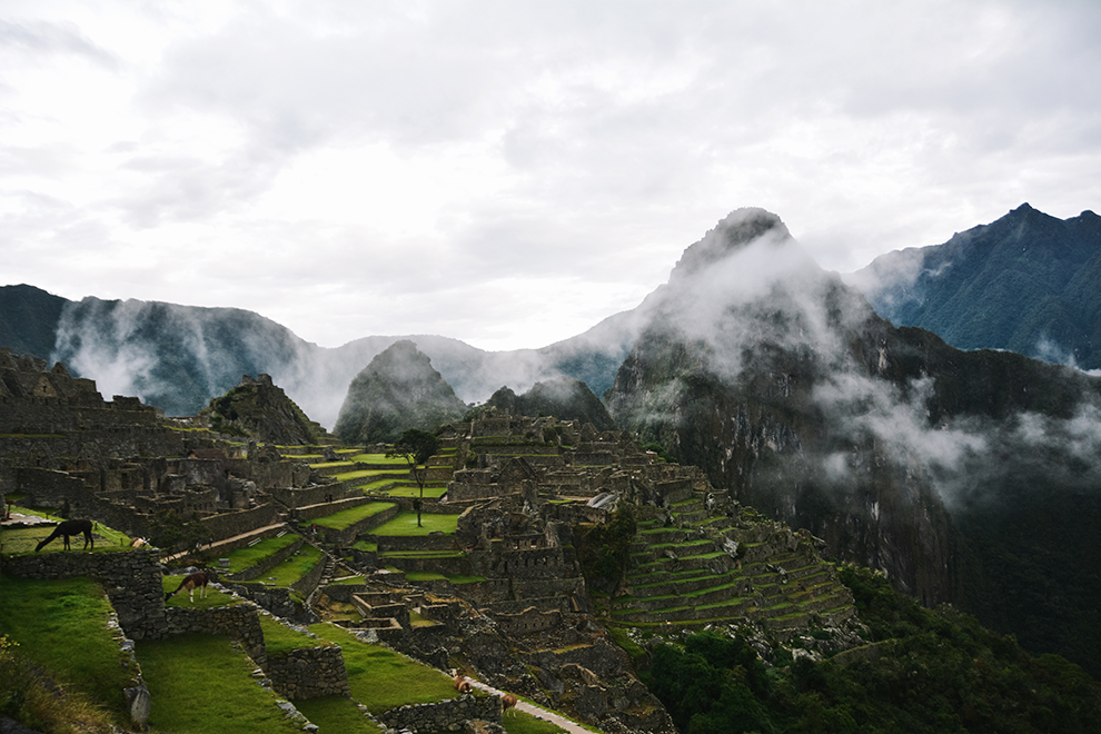 De bekende groene terrassen van Machu Picchu op een vroege regenachtige ochtend
