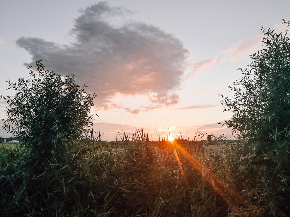 Zonsondergang in het Lauwersmeergebied