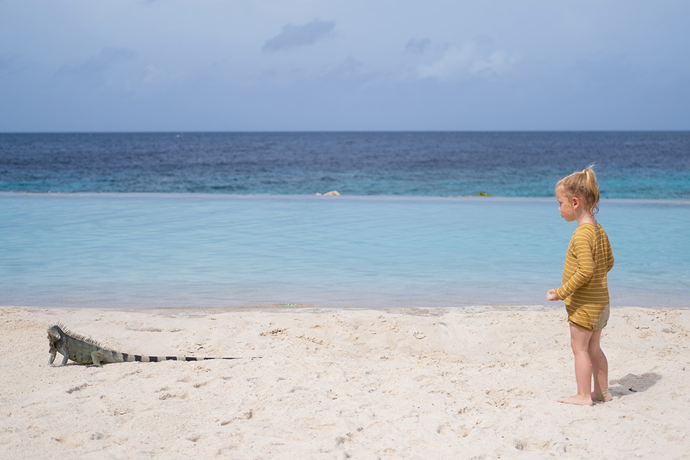 Dochter Maeve ontmoet leguaan op strand Curaçao