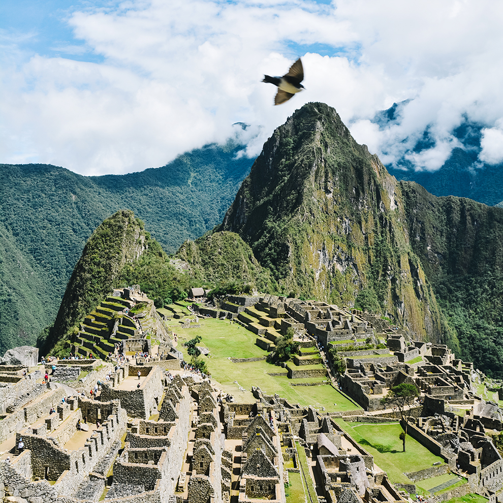 Vogel vliegt over de geheime stad van de Inca's: Machu Picchu