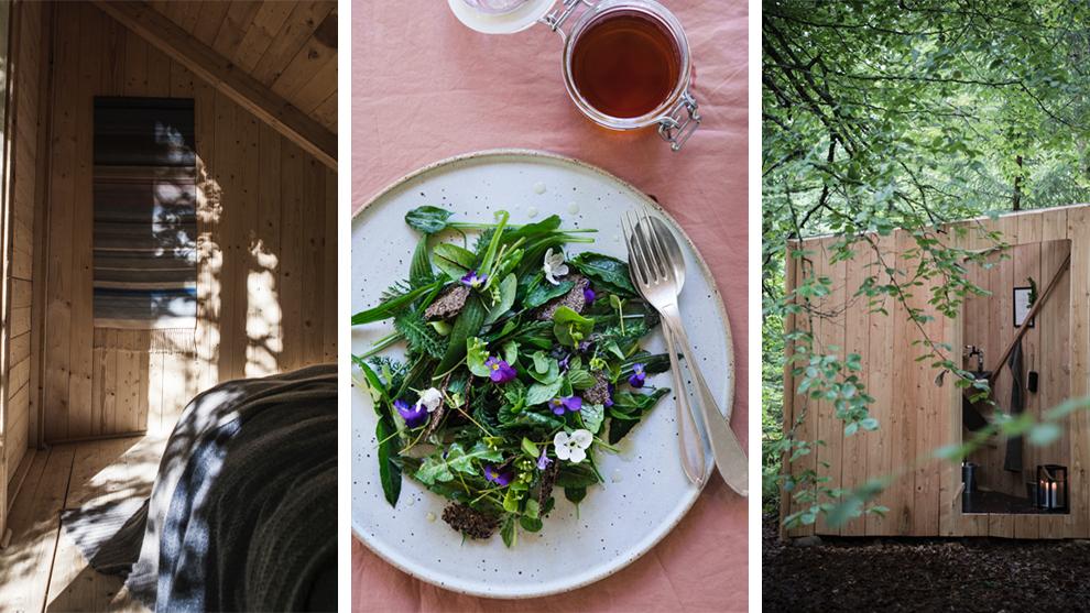 Houten hut in de bossen van Zweden