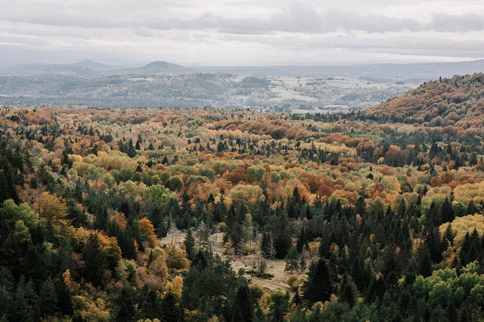 Uitzicht over de bruin, groen en geel gekleurde bomen van het vulkaanlandschap van Frankrijk