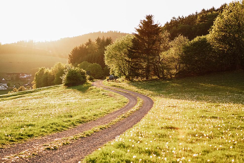Groen, glooiend landschap in Sauerland, Duitsland