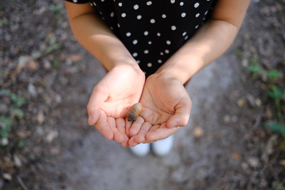 Nichtje Nova houdt een eikeltje vast in het bos