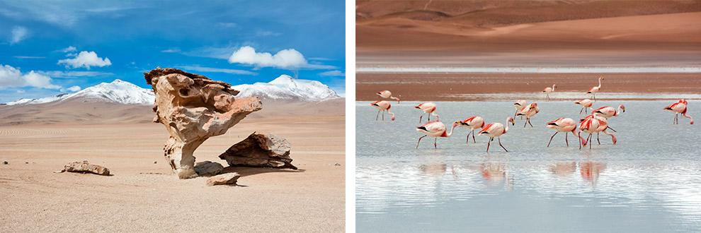 Bijzondere rotsformaties en roze flamingo's in het water