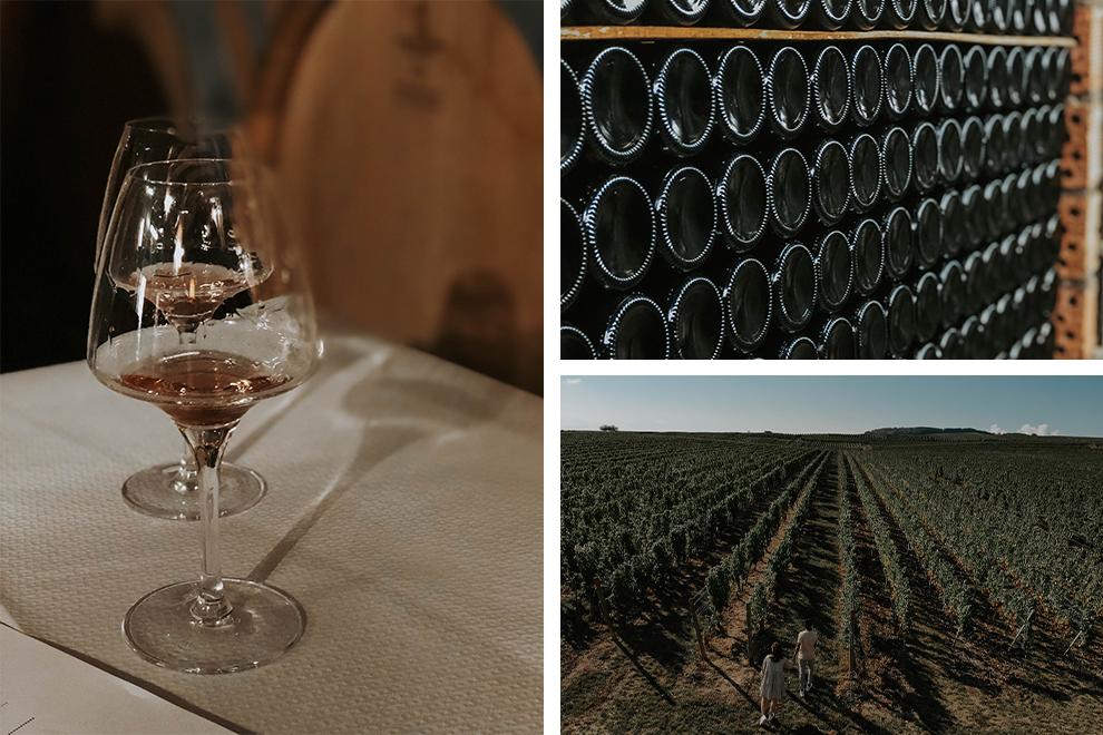 Wijnproeverij met als hoogtepunt de Pinot Noir