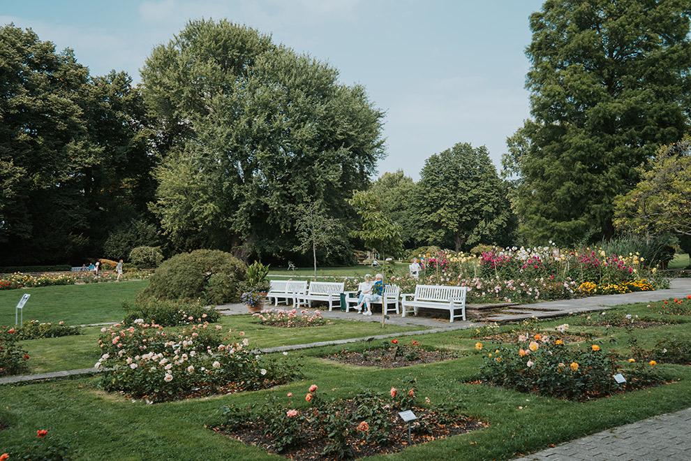 Kleurrijke bloemen sieren het groene stadspark in Hannover