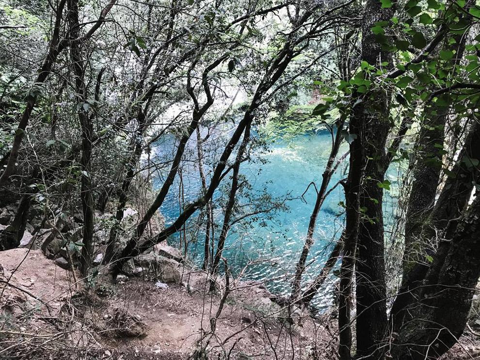 Helder blauw beekje zichtbaar tussen de bomen door