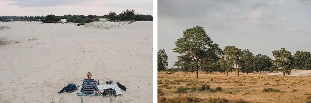 nederland-natuurpark-drenthe