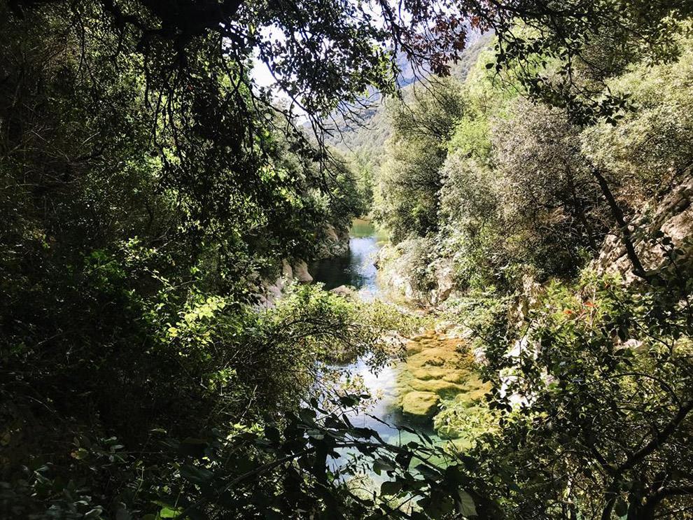 Helderblauw beekje stroomt door de natuur van Sant Aniol in Spanje