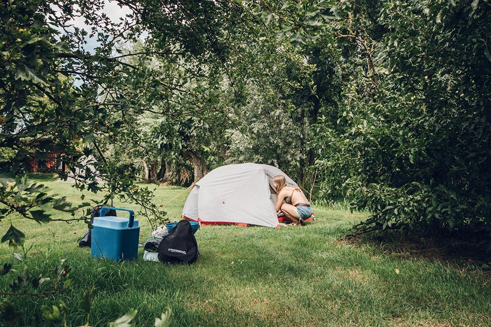 Tent opzetten temidden van groene bomen